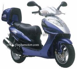 Scooter 150cc gaz (YL150TA) Falcon série