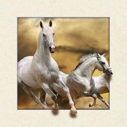 Animal personalizados Cavalo de imagem 3D 5D foto Lenticular para Oferta Promocional