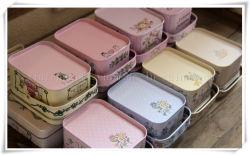 De nouvelles illustrations Hand-Painted Peter Rabbit Tote boîte Boîte à bijoux Boîte en fer de cas de stockage de récipient de bonbons Boîte cadeau