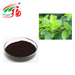 Экстракт листьев шелковицы хлорофилл 15%