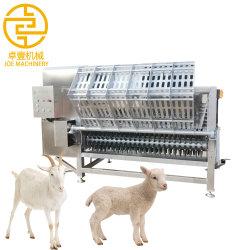 Dépose de la machine automatique de mouton poils de chèvre Depilating Debristling ébouillantage moutons de la machine pour la vente de la machine