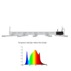 Volles Spektrum HPS, das Wasserkultur-LED Lampe 1200W 1000W 600W LED wachsen, wachsen für Verkäufe hell