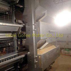 Cage de poulets de chair de poulet automatique Coop l'Aviculture du système