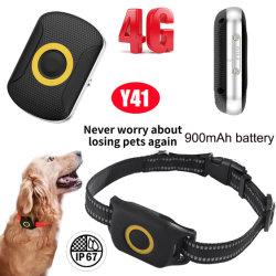 4G/Lte는 노동 시간 Y41 900mAh 건전지를 가진 개인적인 애완 동물 추적자 GPS를 10 일 방수 처리한다