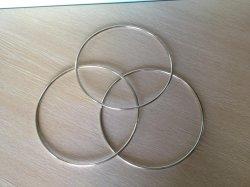 De CirkelRing van de Uitrusting van het metaal voor het Toestel van het Paard