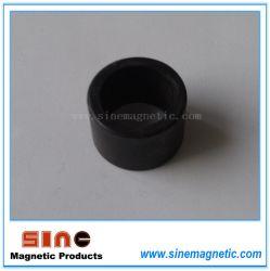 Эбу системы впрыска, пластиковый магнит кольцевым магнитом мотора магнита
