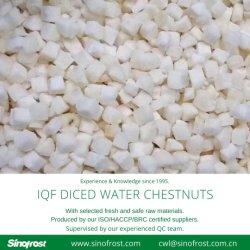Castañas de agua IQF congelado dados, trocitos de castañas de agua IQF, trocitos de castañas de agua, Congeladas castañas de agua cubos IQF, rodajas de castañas de agua, escaldados, pelados