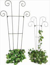 プラント(Xy11189/Xy11190)の園芸花のオベリスクのための鉄ワイヤートレリス