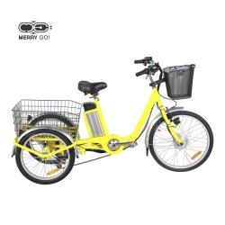 Ce-Goedgekeurde City 3 Wheels Electric Driewieler Voor Volwassenen