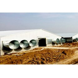 Großes Metall Modern Rain Resistance Chicken Home Geflügel Farm Gebäude