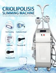다기능 Lipolaser Fat Freezing Weight Loss Body Slimming Cavitation Beauty 기계
