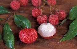 Frutta in scatola Lichee dolci in scatola in sciroppo leggero/pesante con litografia In tini verdi facili aperti - il miglior prodotto a Fujian
