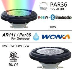 IP67 6W/10W/13W/17W PAR36/AR111 VOYANT LED