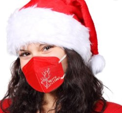 Masker van het Gezicht van de Fabriek van de Partij van de Gift van het Masker van Kerstmis het Speciale OEM Aangepaste met Earloop en Filter