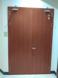 外部の内部の純木の鋼鉄木製の機密保護の非常口エントリ耐火性の耐火性PVCによって薄板にされる火の反火の鋼鉄及び木の出入口