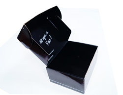 Cassetta postale stampata abitudine laminata lucida