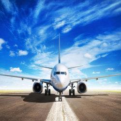 Porte à porte professionnels des services de transport du fret aérien à l'Amérique USA UK Canada par DHL Agent d'expédition transitaire en mer