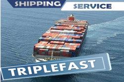 أفضل سعر للشحن البحري من الصين إلى بيرو