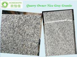 Propriétaire de la carrière de compétitivité des prix en granit poli de couleur grise de Nice