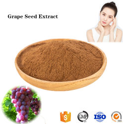 El extracto de semilla de uva cosmético antienvejecimiento en polvo para