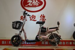 Легкий Lead-Acid аккумуляторная батарея электрический велосипед 48V 12AH