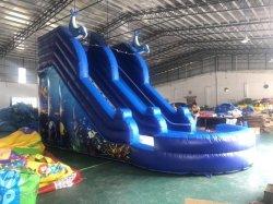 10*6*5mのイルカプールが付いている膨脹可能な水スライド