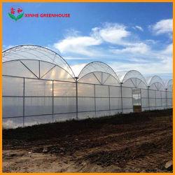 Tipo de arco de la película de plástico de la agricultura de invernadero de jardín para los tomates/frutos/COL/Coliflor/Yuca/Pepino/Tomoto/Cherry Tomoto Capscium/Color/Pepper