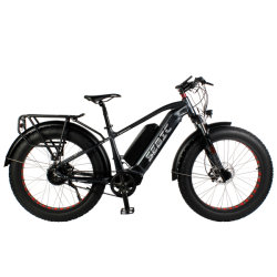 All Terrain Grande Potência Alto Desempenho da bateria dupla 17,5ah 14ah Motor Cubo 750W 1000W Alta Passo Gordura Homem bicicleta eléctrica
