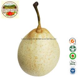Fournisseur de l'exportation d'alimentation de la Chine pour la vente de produits chinois de fruits frais poire Ya pear pear pear au début de la Couronne Su Shandong poire