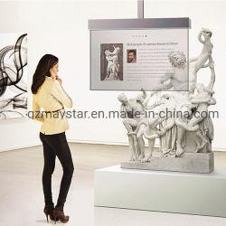 Maystar Samsung OLED de 55 grandes pantalla transparente translúcido de gran tamaño del monitor OLED OLED transparente en la pantalla de publicidad
