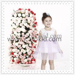 De uitstekende kwaliteit draagt Kleding van L van de Meisjes van de Manier van de Jonge geitjes van de Ontwerper de Oorzakelijke