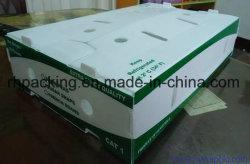 Twinwall PP-Box, Kunststoffkarton, Coroplast Box Hersteller/PP Fruit Box mit Corona Behandelt 3 mm 4 mm 5 mm