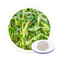 DR 보조 공장 맞춤형 칼륨 황산 NPK 26 10 15 토마토용 질소 농용 비료
