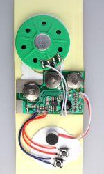 기록 가능한 건강한 음성 음악 인사장을%s 말하는 기록 말하는 모듈 칩
