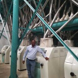 Machine de développement de froment dur de blé dur de blé tendre