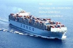 Trasporto marittimo professionale di Shenzhen che trasmette a Vancouver