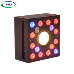 DIY-1 LED du module de croître à effet de serre de lumière