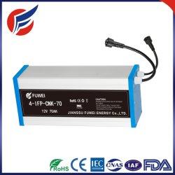 pacchetto solare della batteria ricaricabile di memoria di External LiFePO4 dello ione del litio di 12V 90ah