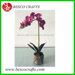 33cm de altura Cymbidium Flores artificiais em plantas de orquídeas pote de cimento