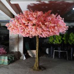 결혼식 벚꽃 꽃 나무
