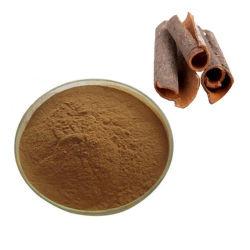 Casca de canela em pó extracto 10%~40% polifenóis canela
