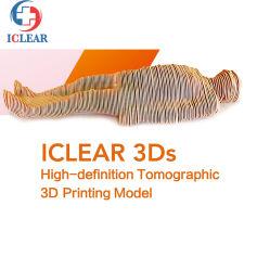 医学教育継続的なセクション人間体断層撮影可視 3D 印刷 モデル