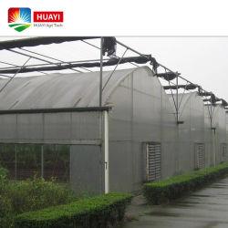 Tunnel économique plastique Multi Span Po film PE serre avec système de la culture hydroponique pour Rose/tomate/fraise/Laitue/de plus en plus de concombre