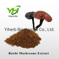 La nature Herb Ganoderma lucidum polysaccharide de sporocarpes Reishi Extrait de champignons