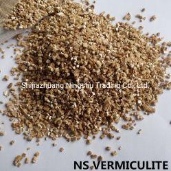 الفضة الذهبية الفضية الفضية -- البستنة الدرجة الدقيقة -- مزيج التربة الفخار ، ينمو متوسطة