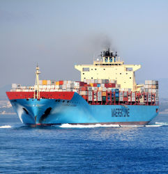 Морские грузовые перевозки из Шанхая в Лос-Анджелесе НВУ службы доставки морским путем привлечения оператора грузовых вперед