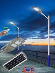 Tutto compreso/ha integrato l'indicatore luminoso di via solare del LED