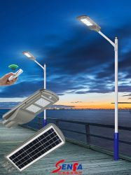 Todo-en-Uno/Calle luz LED Solar integrada