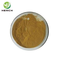Les polyphénols naturelles Echinacea purpurea Extract en poudre