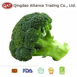 Intero broccolo Frozen con il prezzo competitivo